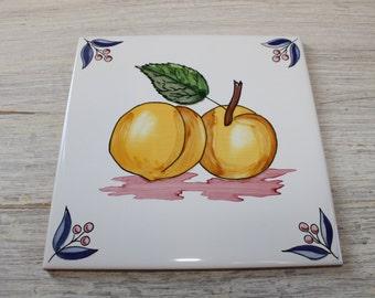 Apricot Terracotta Ceramic Tile Backsplash Apricots Decorative Ceramic Tiles Made In Spain