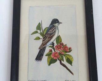 Vintage Original Watercolor Bird Painting