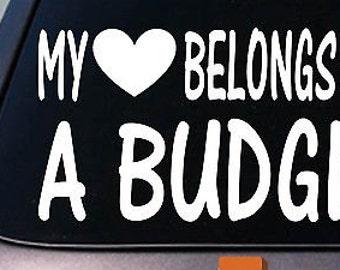 My Heart Belongs To A Budgie Sticker Decal *D949*