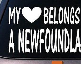 My Heart Belongs To A Newfoundland Sticker Decal *D915*