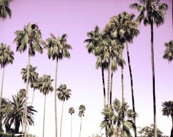 Beverly Hills Palm Trees Photo, Beverly Hills Photography, California, Pink Palm Trees, Large Wall Art, Art Print