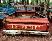 1970s Chevy Truck in the Woods with a Tree growing between cab & bed Photograph