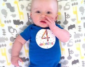 Monthly Baby Stickers - Celebration, Milestone Sticker, Baby Month Milestone Sticker, Gender Neutral