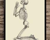 Praying skeleton skeletal system human body anatomy poster anatomy decor medical poster bones vintage anatomic art home decor office decor