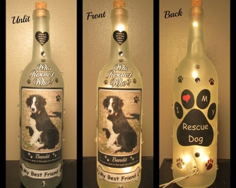 Who Rescued Who Lighted Wine Bottle Night Light