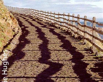 Shadow Fence - Original Fine Art Photograph - Shadows