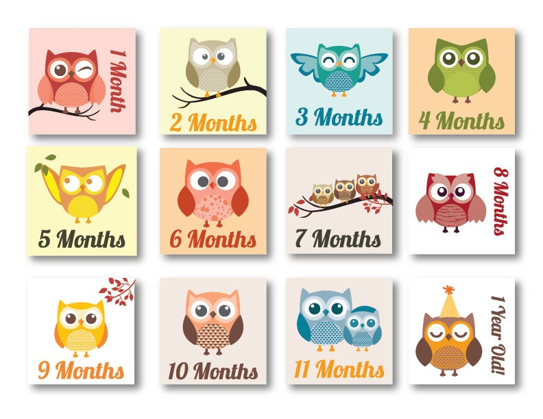 instant printable 12 months baby milestone template