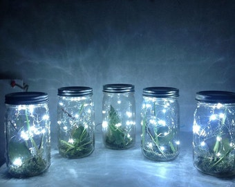 Stunning fire fly jars! Handmade with love for your big day! Choose light intensity and ribbon color!