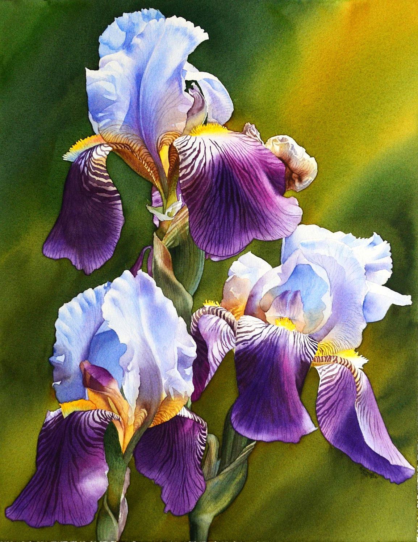 Sunny iris original watercolor painting beautiful flowers for Pretty flower paintings