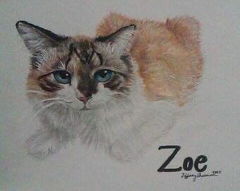 Colored portrait of a cat