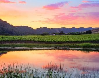 Napa Valley Art, California Wine Country, Wine Valley Sunset Print, Pond Reflection, Wine Vineyard, Gallery Wrap, Pink Orange Green Canvas