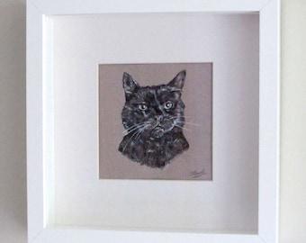 Framed Custom Pet Portrait Illustrations of your cat - Original artworks of your wonderful furry friends