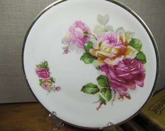 Vintage C. T. Altwasser Hand Painted Floral Plate - Made in Germany