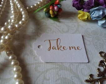 Take me Tags - Alice in Wonderland take me Tags - Tea Party or Wedding Tags - Set of 25 to 300 pieces