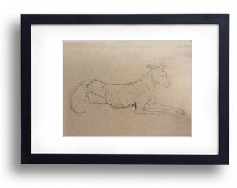 Signed limited edition giclée print of greyhound lying down pencil sketch