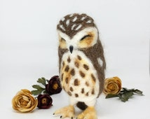 Saw whet Owl, needle felted sculpture, cute happy needle felt owl, wool owl, soft owl, happy owl, sleeping owl