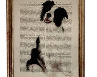 Border Collie, beautiful Art Print on Upcycled Dictionary Book page 8'' x 10'' inches
