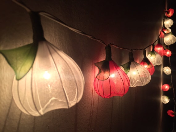 Red String Lights For Bedroom : Fairy Lights-20 White-Red Heart Flower Fairy by FloraBlossanova