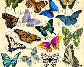 Butterfly Clipart Digital Butterflies Clip Art Cute Fun Colorful Butterfly  Monarch Butterfly Garden Butterfly Clip Art