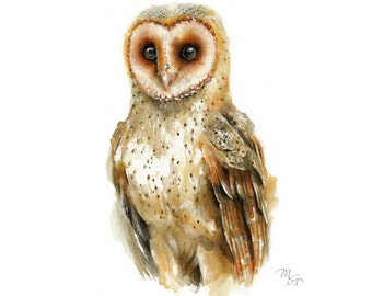 Owl watercolor - Owl Painting - Giclee Print - Home Wall Decor - Bird  Watercolor Illustration.