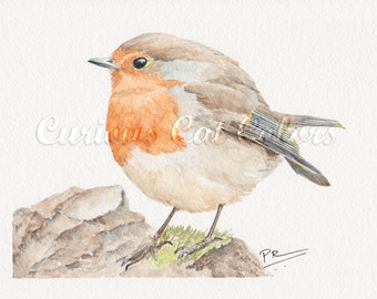 European Robin watercolor print