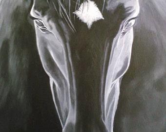 Midnight, black horse in moonlight, silhouette,silver, black