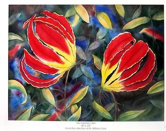 Flower Print - Two Glorioso Lillies - Botanical Print -1996 Naturalist Book Page - 12 x 9