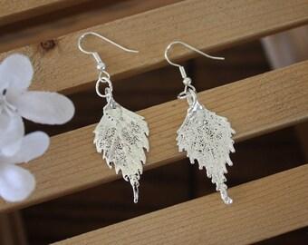 Silver Leaf Earrings, Birch Leaf, Real Leaf Earrings, Small Real Leaf Earrings, Birch, Sterling Silver, Nature, LESM84