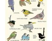 "Australian Bird wall art - Australian Bird Decor - Bird Art - 4 for 3 SALE - Birds of Australia Print - 8.3"" X 11.8"""