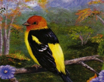Western Tanager Bird Note Cards Creationarts Free Shipping