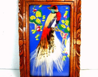Feathered  Bird Picture in Hand Carved Wood Frame, Painted, Exotic Mexico 1950s Vintage , Very Colorful Wall FOLK ART