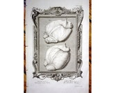 1735 HEART ANATOMY hearts of a cow original antique animal anatomy engraving print - perfect for valentine day