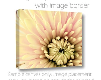 SALE-Large Wall Canvas-20x30-Floral Photography-Chrysanthemum-Cottage Wall Art-Pale Yellow-Pink-Green-Macro Photography-Living Room Wall Art
