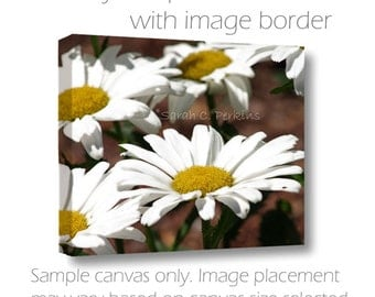 Daisy Wall Art-Yellow & White Decor-Gallery Wall Art-Original Art-Garden Art-Flowers Photography-Floral Photography-20x30-Nature Wall Art