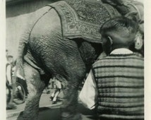 "Vintage Photo ""The Elephant Parade"" Circus Animal Snapshot Photo Antique Black & White Photograph Found Photo Paper Ephemera Vernacular - 09"