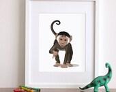 Monkey art print, monkey nursery artwork, baby jungle animal print, safari childrens ilustration - nursery art