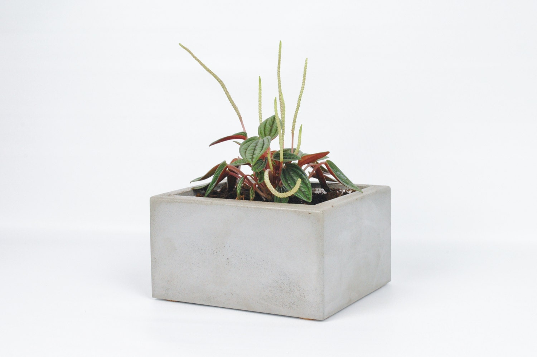 Rectangular Concrete Planter Planter Pot Succulent Planter