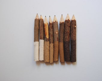 "DRIFTWOOD Collection . Eight 3"" or 5"" Dipped Twig Pencils . Ivory Brown ."
