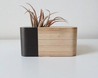 Desk Top Succulent Planter (Grey)