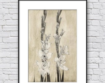 Floral Wall Art, Sepia Print, 1st Anniversary Gift, Vintage Botanical Print, Sepia Photography Print of Gladiolus, Living Room Wall Decor