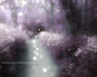 Ethereal Purple Landscape Photography Print, Surreal Trees with Spirit Orbs Art Print, Magical Forest Wall Decor, Dreamy Nature Wall Art