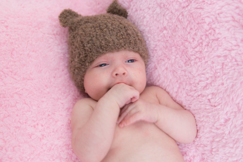 40a90def255 Teddy Bear Hat