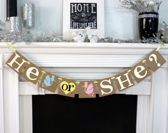 Baby Shower / He or She Banner / Shower / Boy or Girl / Storks / Nursery Decor / Pink, Blue, Yellow / Gender Reveal Party