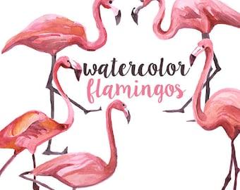 Watercolor Flamingo Clipart