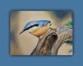 "Oil Painting - ""Nuthatch on the Go"" - Original Oil Painting, #EtsyGifts, #EtsySuccess, bird, branch, tree, nuthatch, gift, signed by artist"