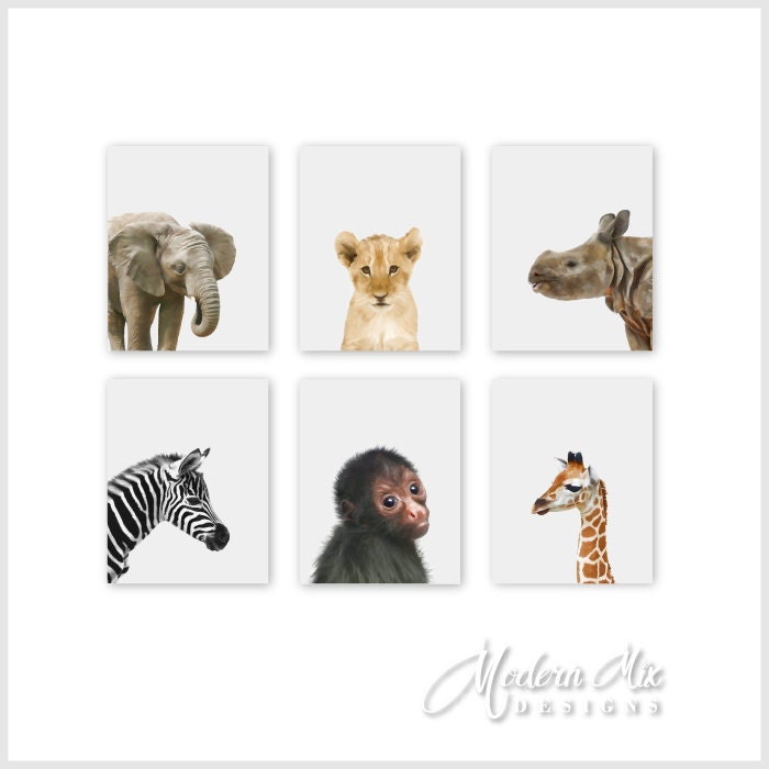 Safari Nursery Decor Jungle Theme Nursery Nursery Artwork: Safari Nursery Decor Zoo Animals Nursery Decor Baby Nursery