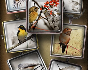 Autumn Bird - Printable 1.5x1.5 inch squares - Digital Collage Sheet CG-566S for Jewelry Making, Scrapbooking, Crafts - Instant Download