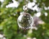 Moss Necklace, Miniature Terrarium, Moss Jewelry, Dark Green, Deer Moss, Glass Orb, Mothers Day Gift, Glass Terrarium, Plant Necklace