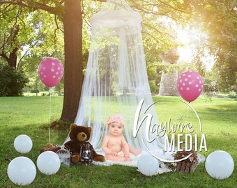 Baby Toddler Child White Lace Canopy Fur Bed in Park Outside - Digital Backdrop - Photography Background with Fur PNG Coverup