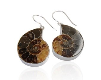 Silver earrings with Ammonite Fossil. Jewelry handmade 100% Made in Italy